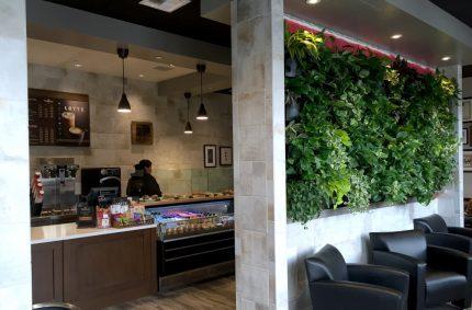 Peets Coffee – Westfield Plaza Bonita