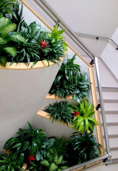 greenleaf ips plants in lobby