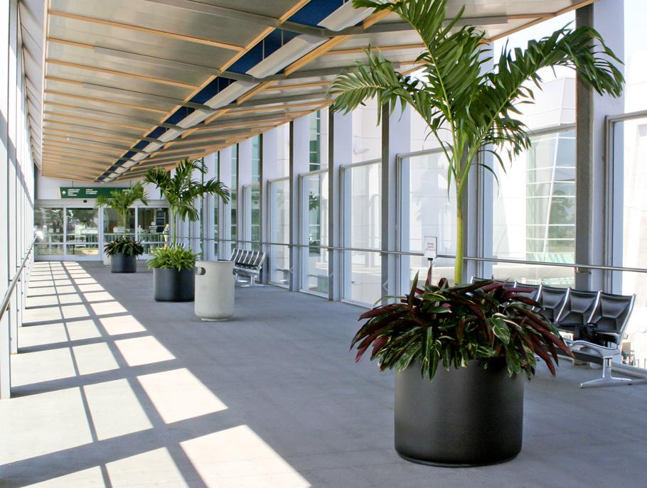 airport bridge plants services
