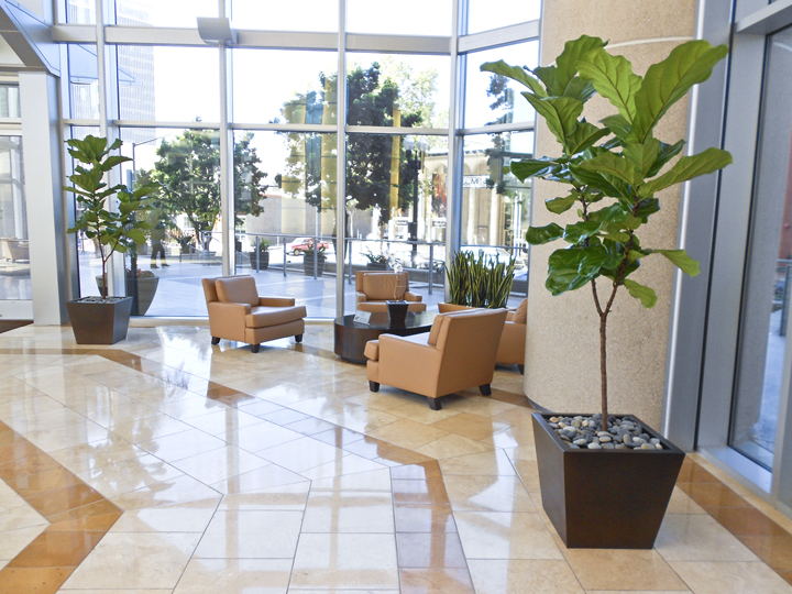 plants services