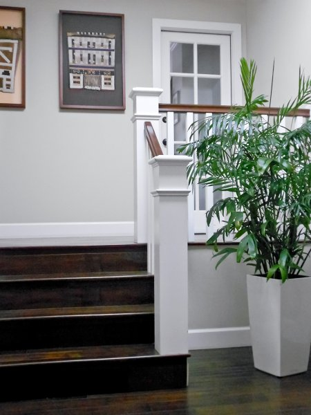 Greenleaf residential plants services