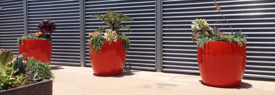 greenleaf ips plants maintenance