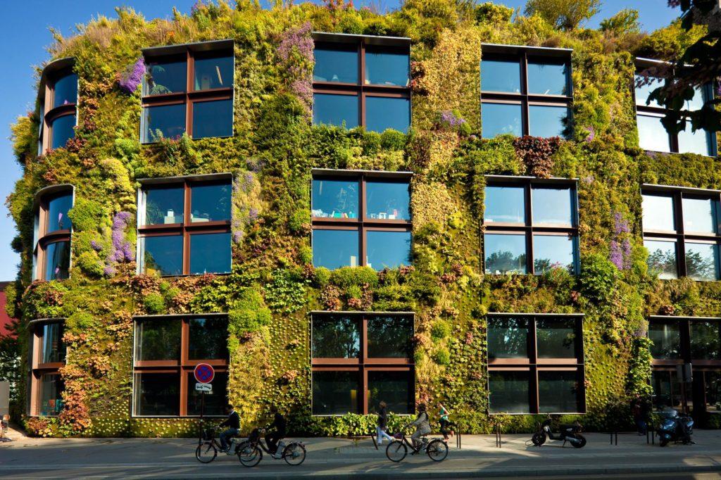 moss wall, living wall, live wall, green wall, plant wall, vertical garden