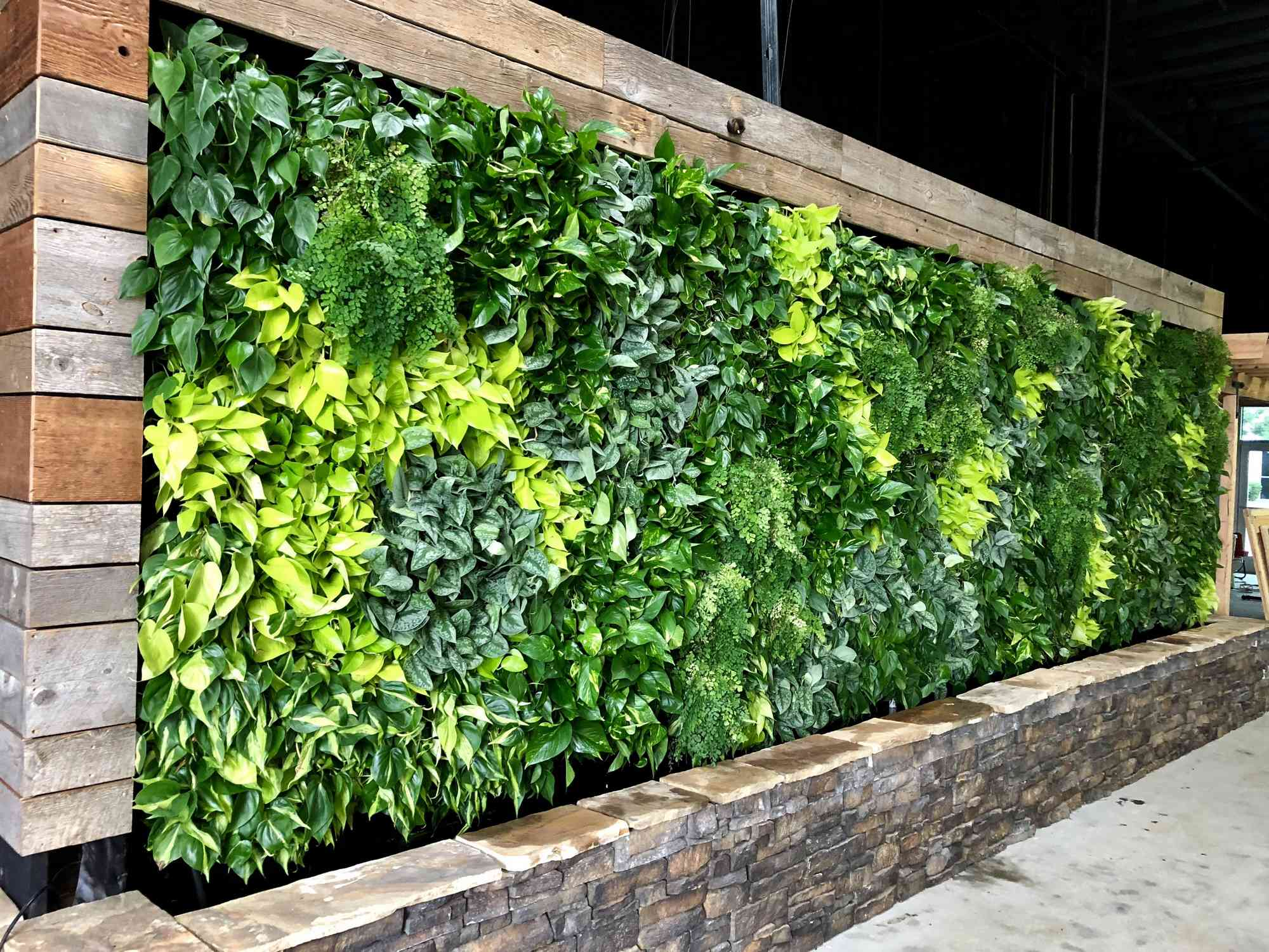 Incroyable Who Installs Living Walls In San Diego?