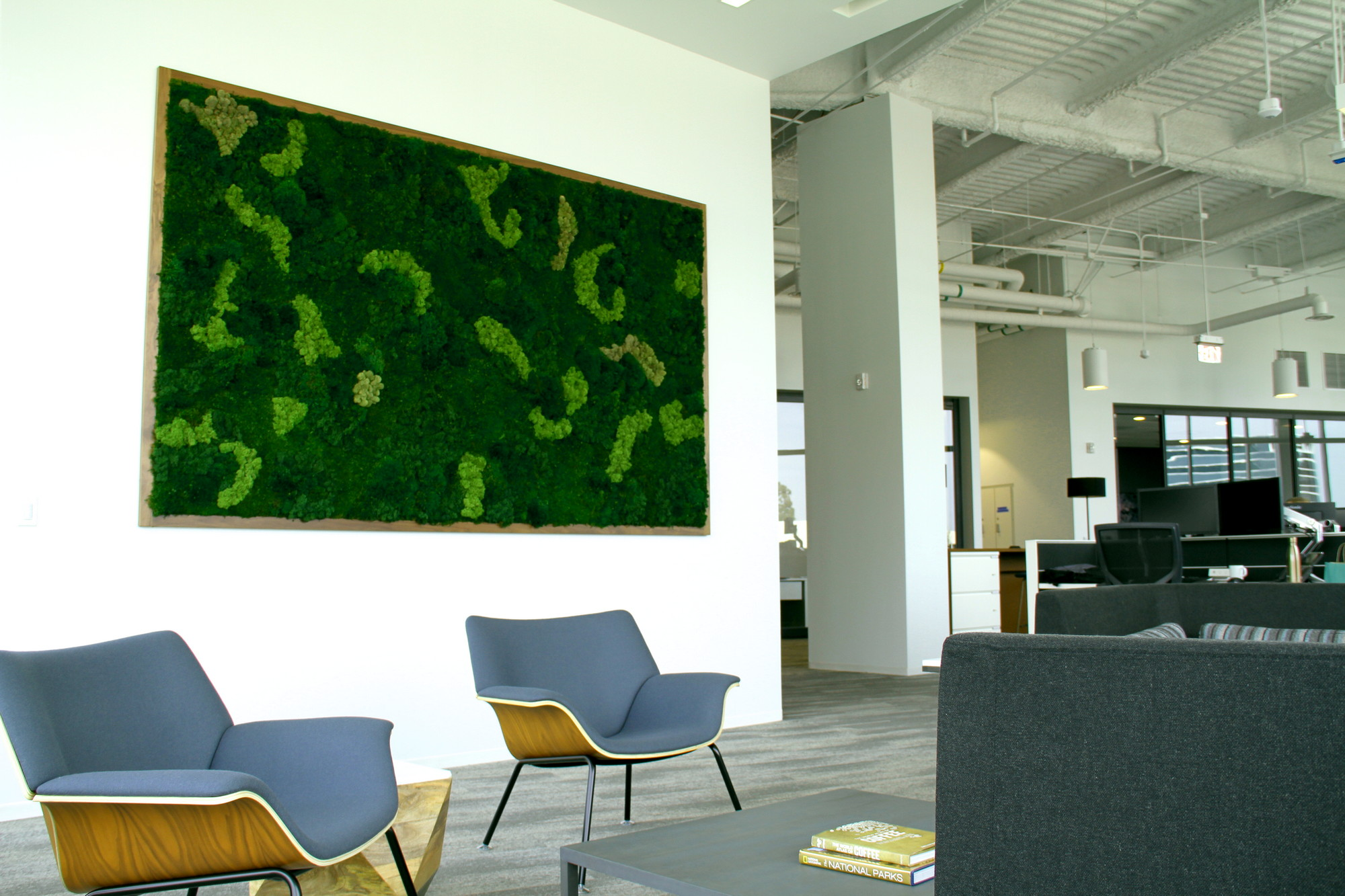 Moss walls in San Diego can be tailored to fit any space requirements