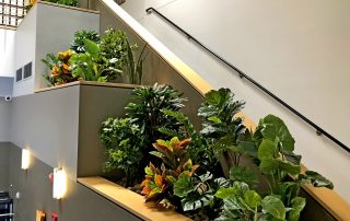 Silk Plants in an Office Space in San Diego, CA