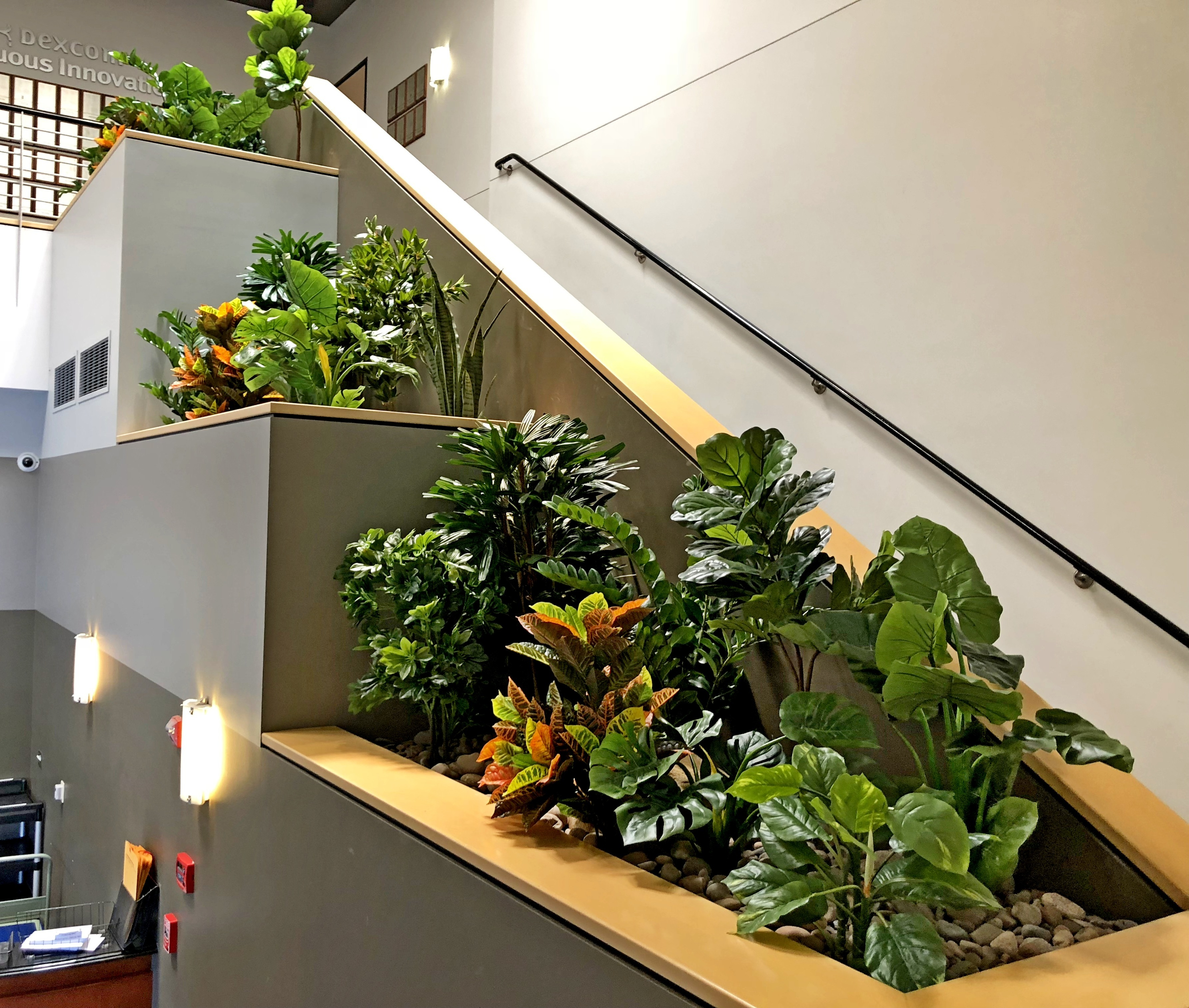 Silk Plants In An Office Space In San Diego Commercial Plants Services