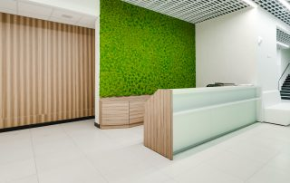 Our Moss Wall Project for Apple