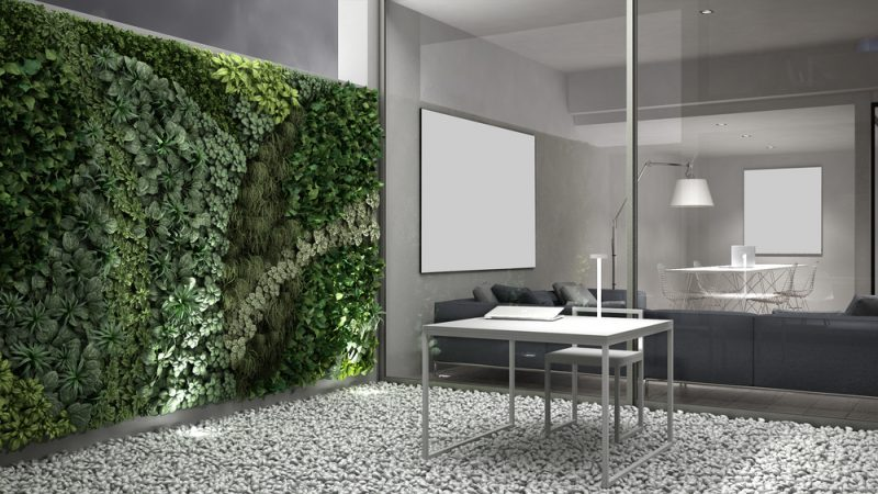 Biophilic Office Design Trends