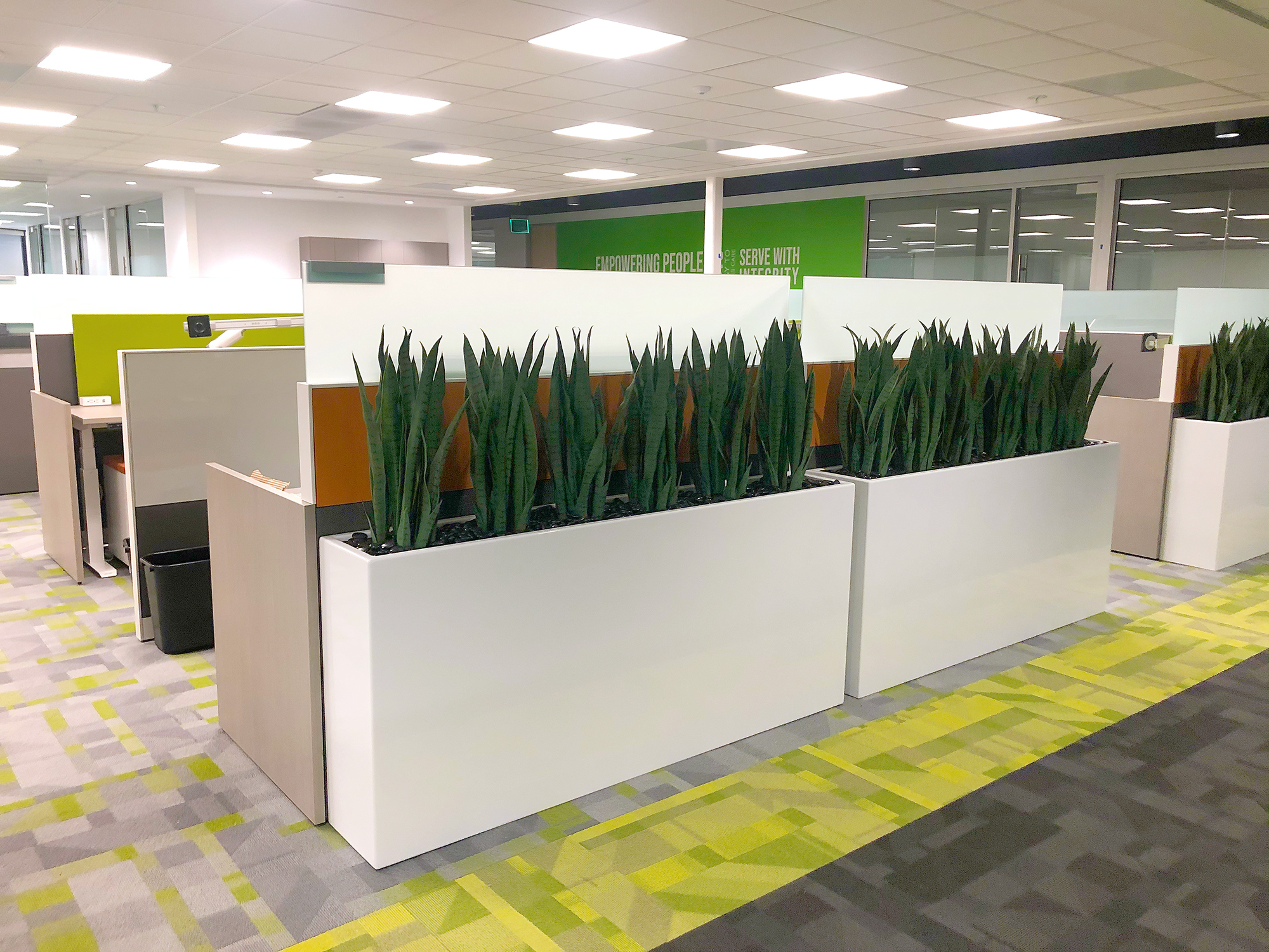 Using Plants to Beautify your Business Space