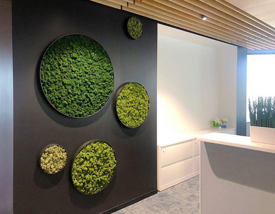 Moss Walls in circular frames