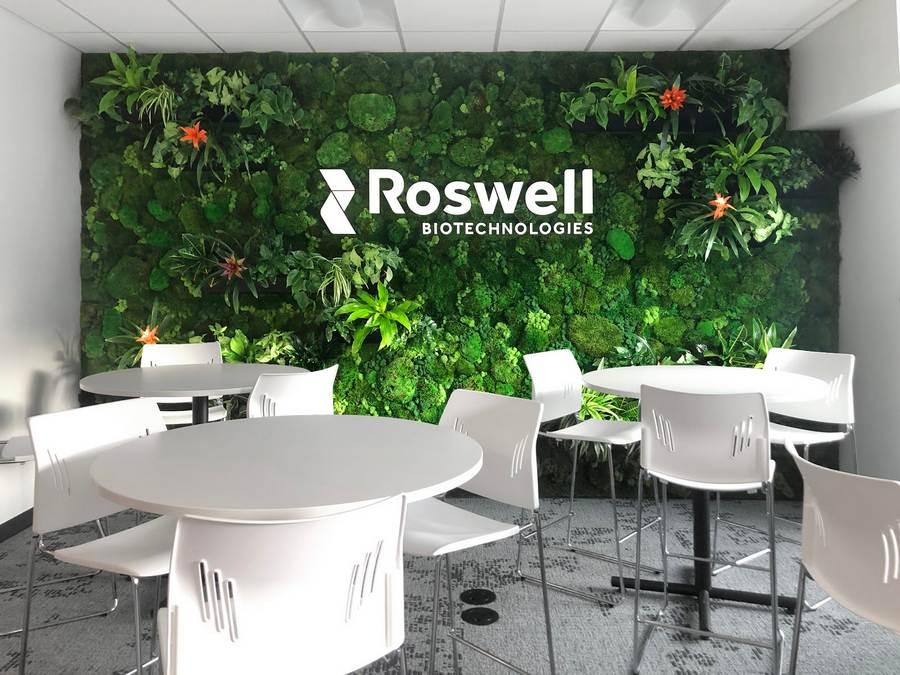Roswell Plant Wall