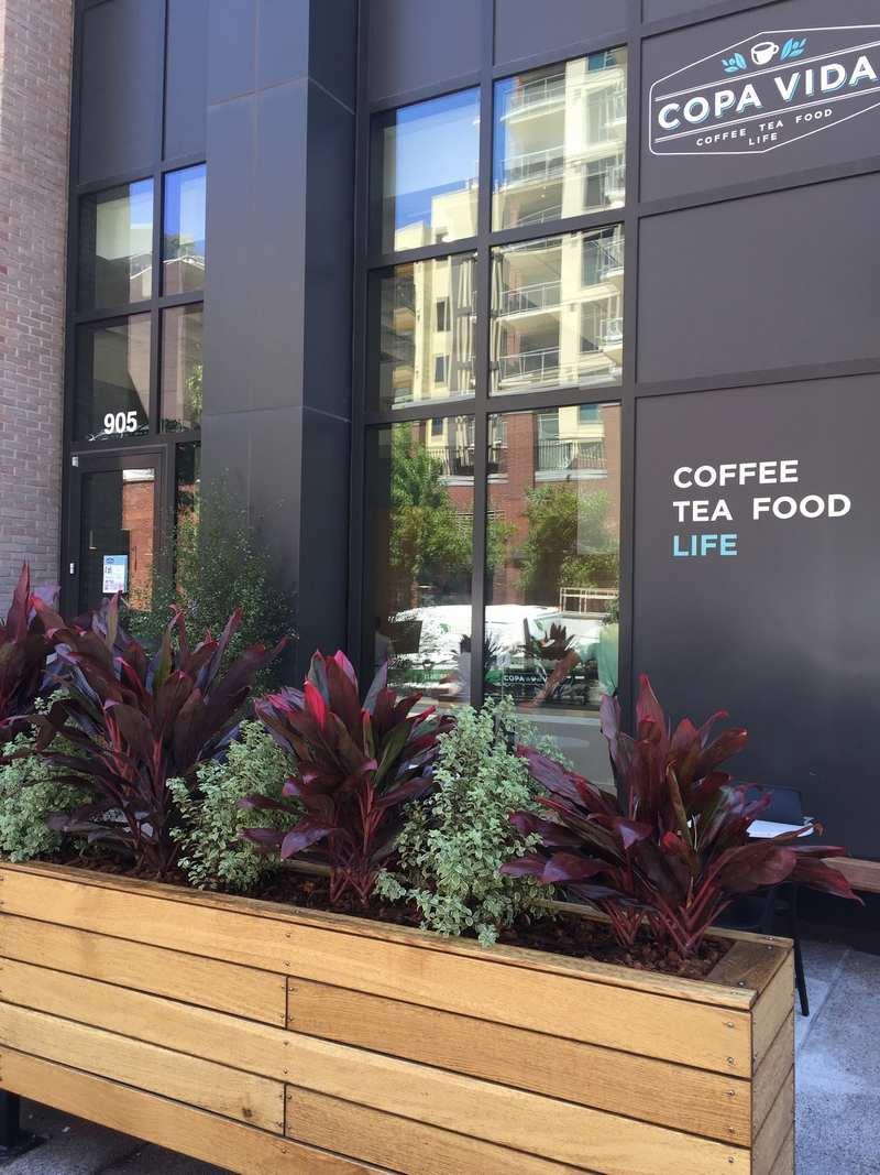 plantscaping coffee shop