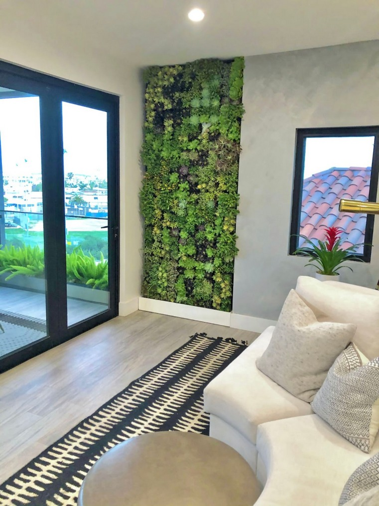 Indoor Plants in Residential Home