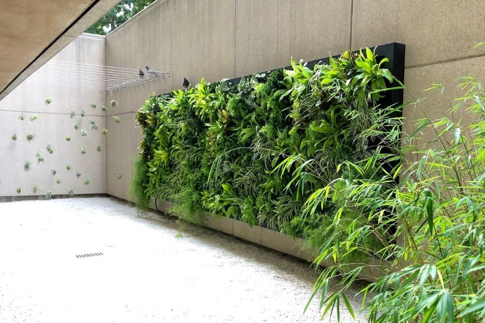 Everything You Need To Know About Green Walls