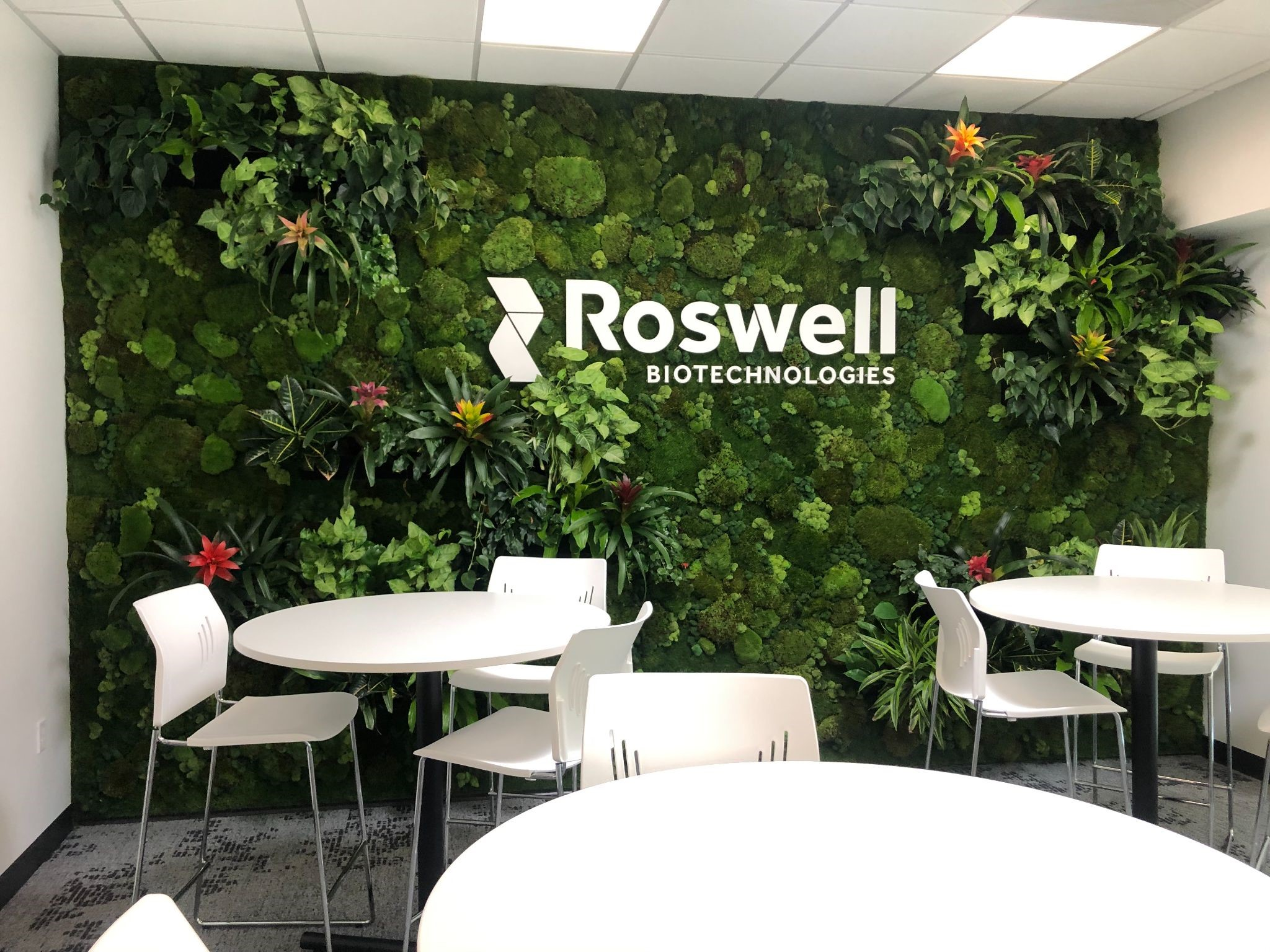 Roswell Green Wall