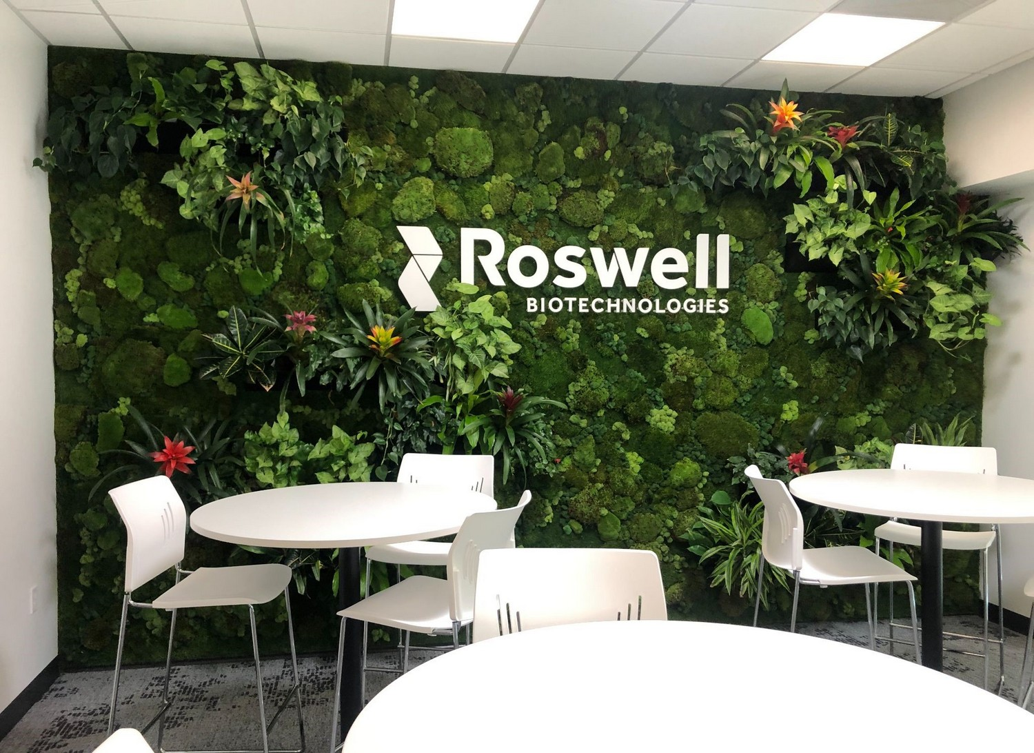 Roswell-Green-Wall