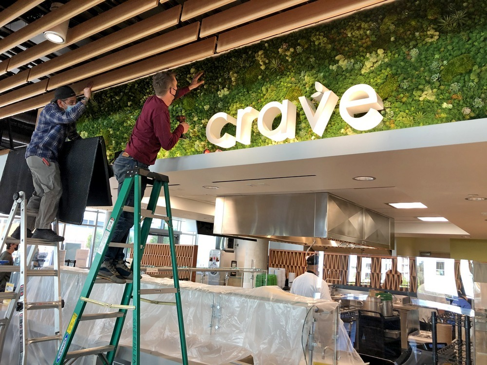 UCSD Crave mosswall